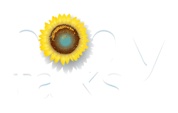 Body Talks - Somatic Therapy for Sensitives